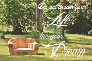 Vive tu sueño